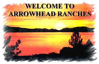 Welcome To Arrowhead Ranches - texas ranches for sale, texas ranch realestate, ranch investments, deer ranches, ranches with water, ranches with creeks, texas farms ranches